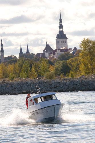 Купить Лодка рыболовецкая Silver Viking 21