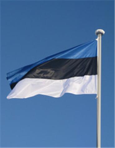 Купить Эстонский флаг национальный флаг