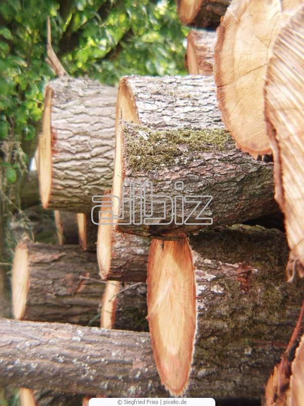 Купить Оцилиндрованная древесина