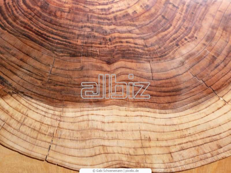Купить Древесина твердых пород дерева - дуб, ясень, бук
