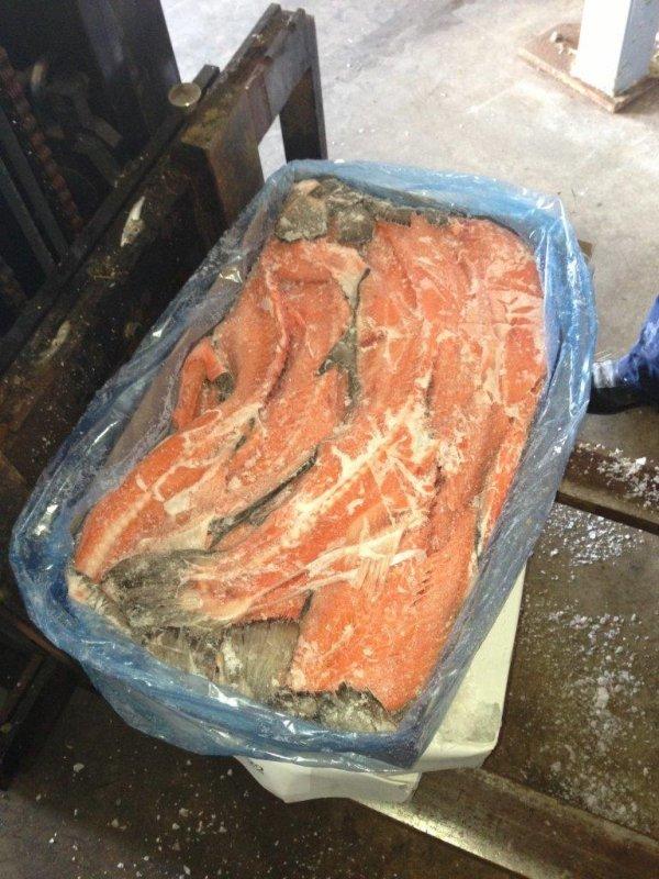 Купить Хребты лосося свежемороженые