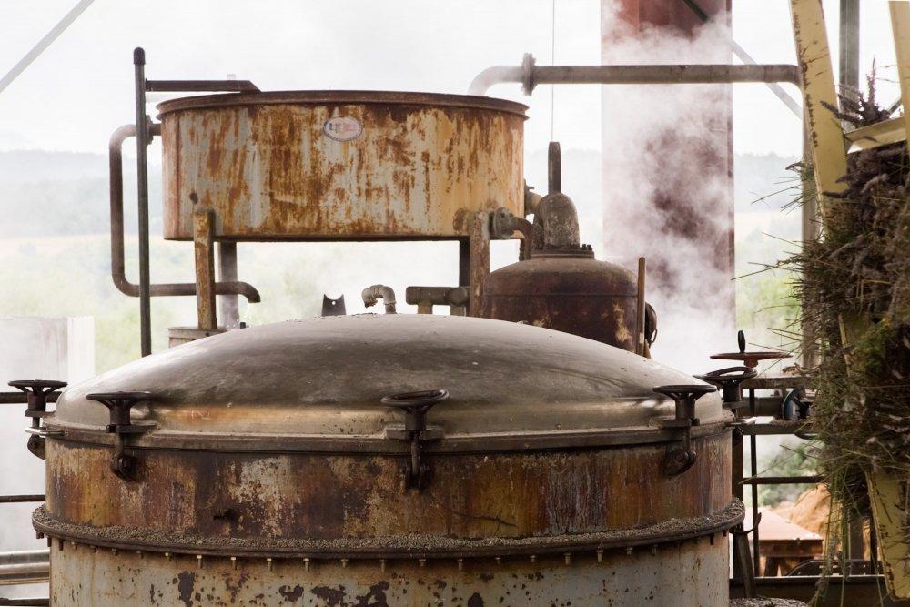 Купить Пихтовое масло сибирское (Abies Sibirica)