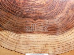 Древесина твердых пород дерева - дуб, ясень, бук