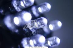 Лампы и лампочки светодиодные