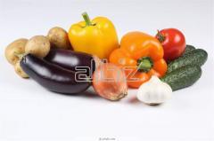 Семена овощей в ассортименте