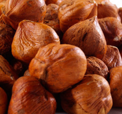 Hazelnuts natural and roasted, chopped and in the