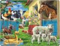 Пазлы Сельскохозяйственныe животныe