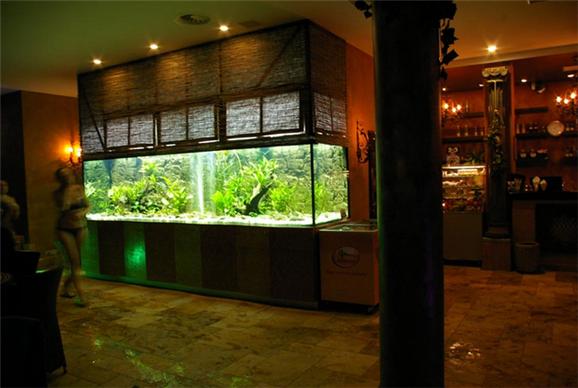 Заказать Установка аквариумов