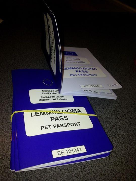 Заказать Ветеринарное обслуживание
