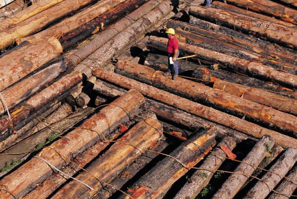 Заказать Деревянные элементы домов
