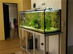Смена декораций  для аквариумов