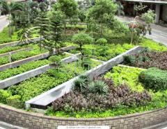Озеленение территорий, ландшафтный дизайн