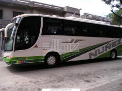 Автобусные туры, экскурсии
