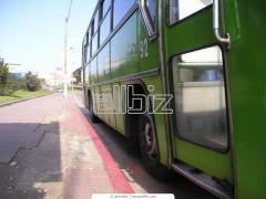 Перевозки автобусные междугородные